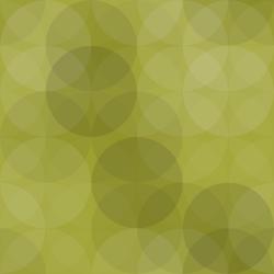 WordPressによるブログの始め方~プラグインの導入~4